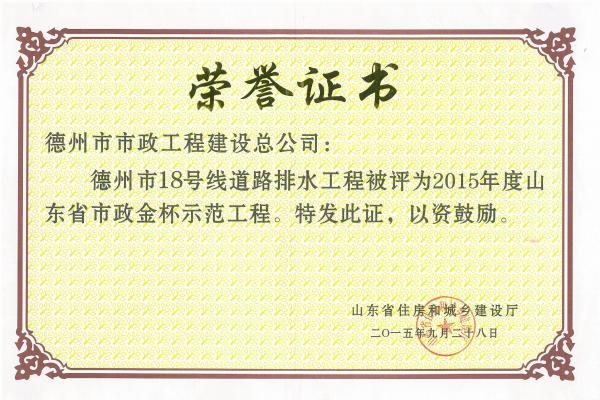 2015年度山东省市政金杯示范工程